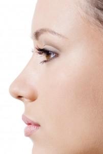 Morphologie du nez
